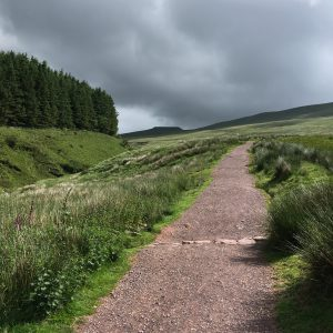 The footpath towards Pen y Fan passes through green grassland with the river running to the left of the path.