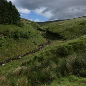As the path bends to the right, the river bears off through the grassland to the left.